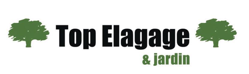 Top-Elagage
